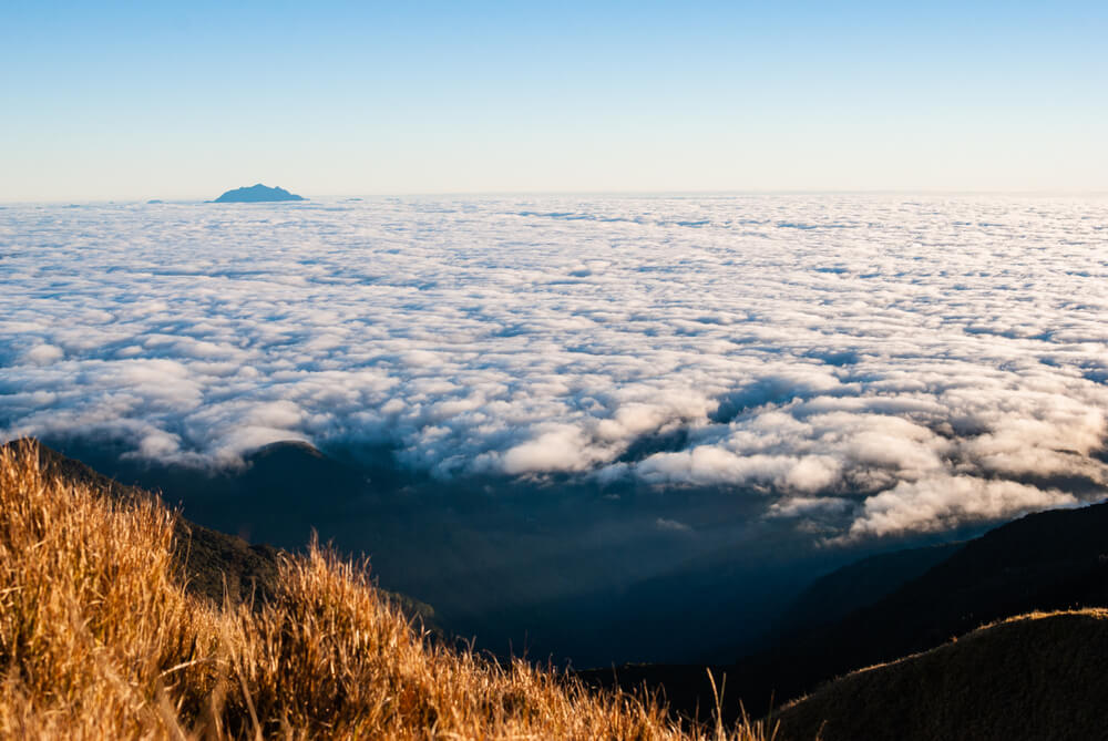 The view from mount pulag's summit