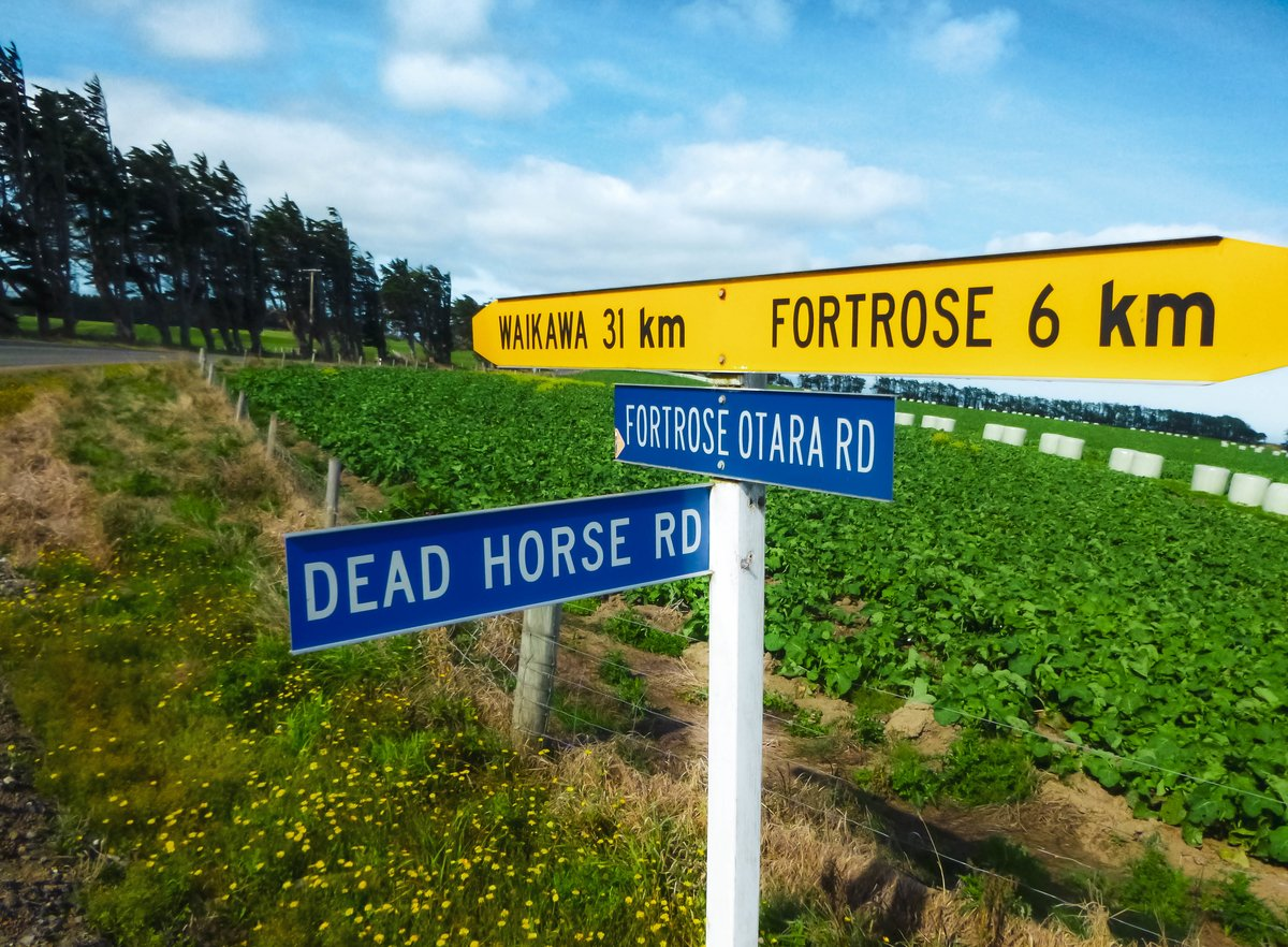 Random funny street sign found while backpacking New Zealnd's south