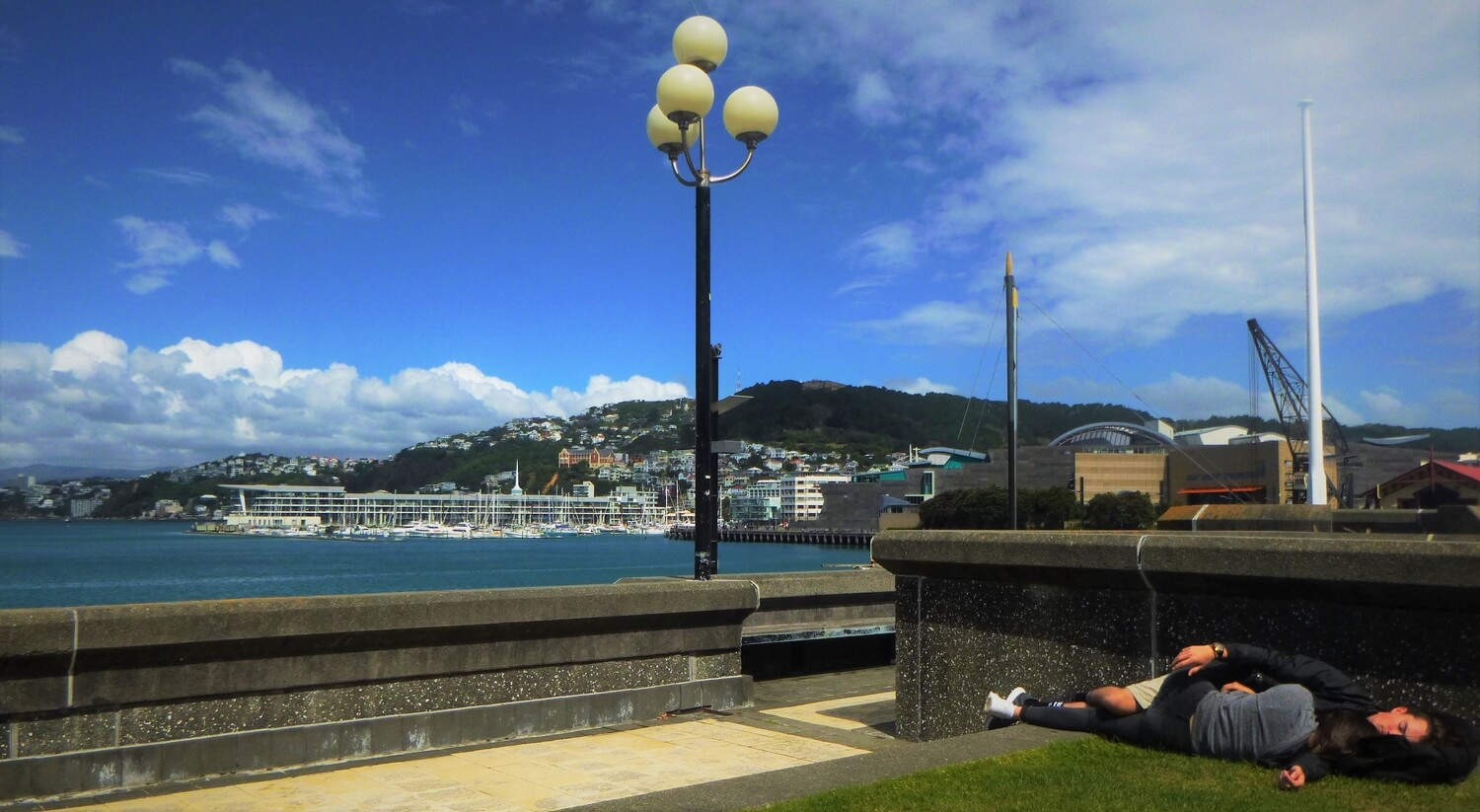 View of the harbour from Wellington's waterfront