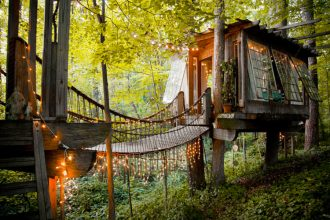 treehouse showcase on airbnb