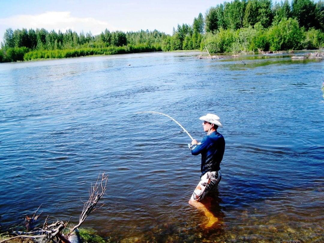 Alaska road trip-salmon