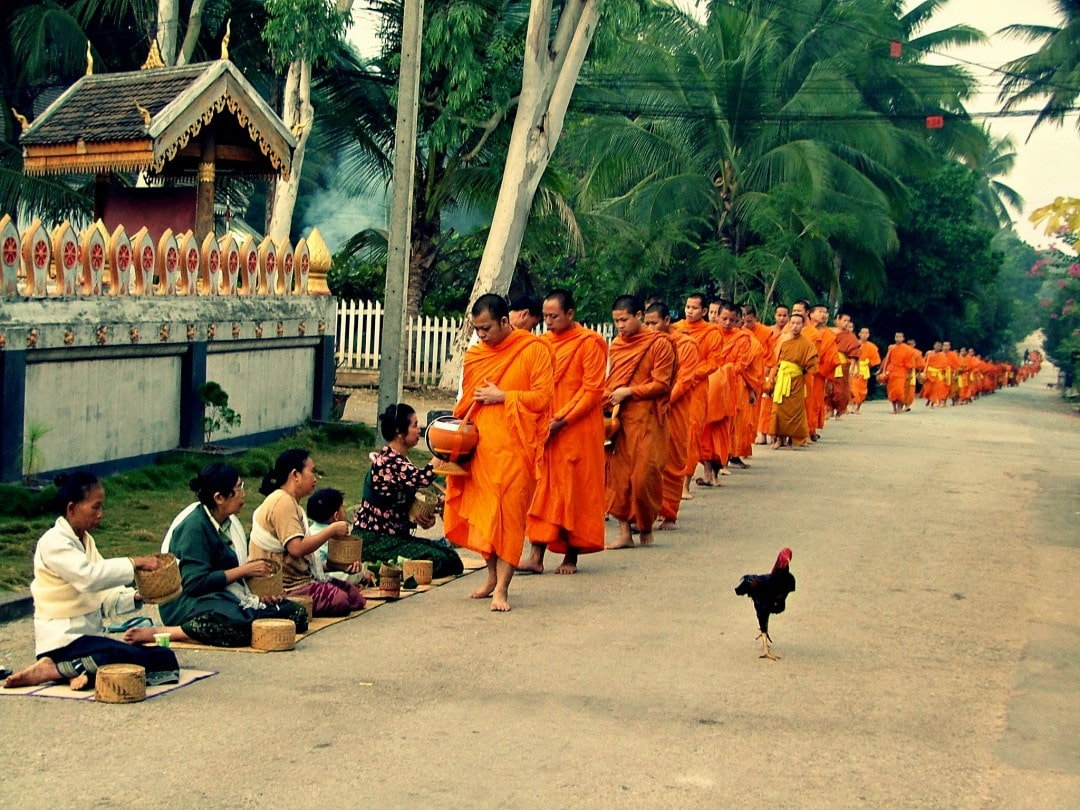 Buddhist monks receiving food at a temple in Laos