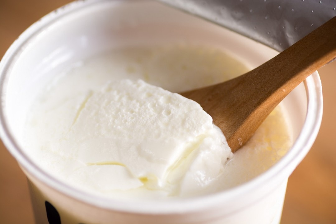 bulgarian food yogurt