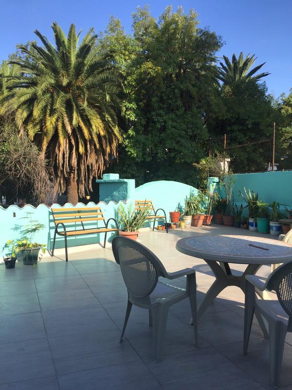 Gael Condesa best hostel in Mexico City