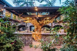 This is the Best Hostel in Medellin
