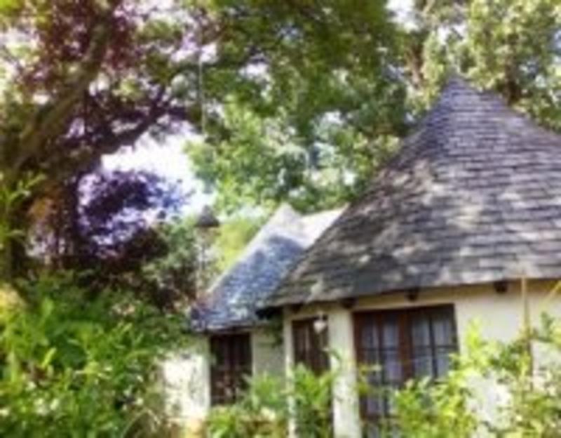 Rosebank Lodge best hostels in Johannesburg