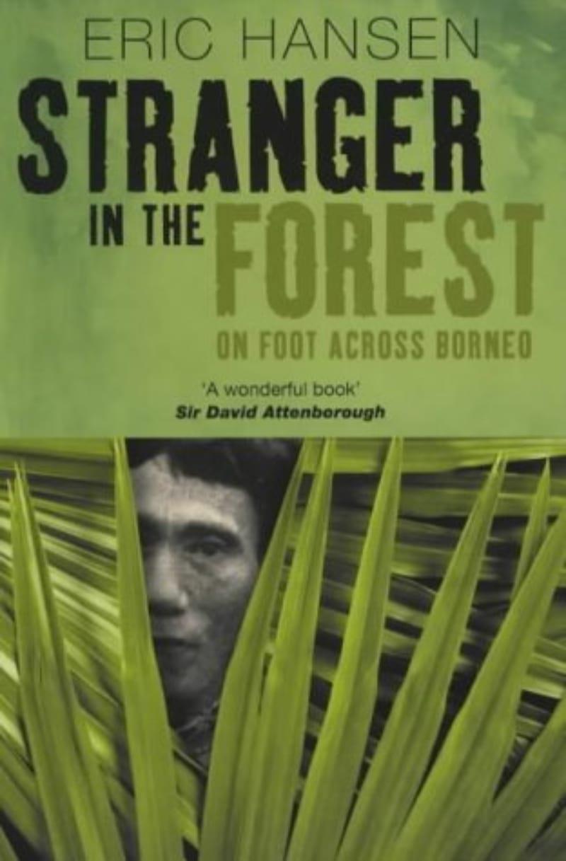 Stranger in the Forest 2
