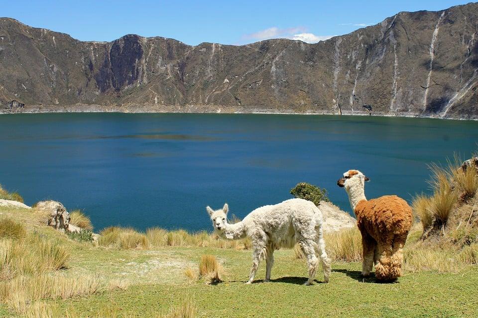 Camping in Peru on the Quilotoa Loop trek