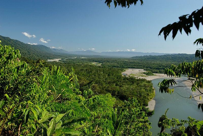 Manu National park in Peru