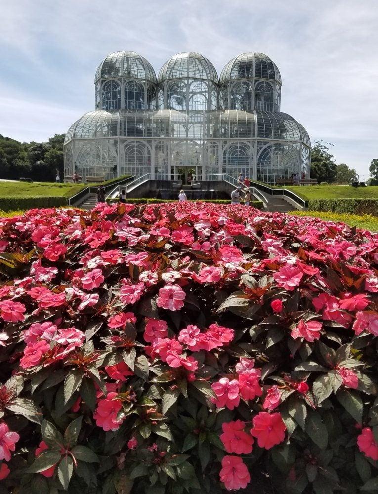 Flowers in the Botanic Garden of Curitiba Brazil