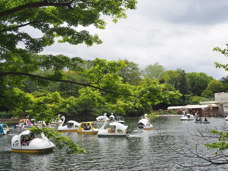 Inokashira Park in Kichijoji, Tokyo