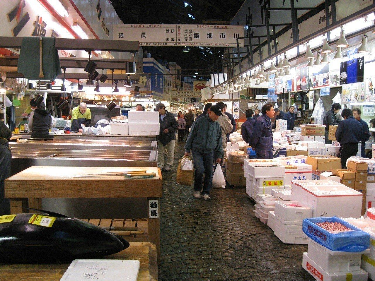 Fish markets in Tsujiki, Tokyo