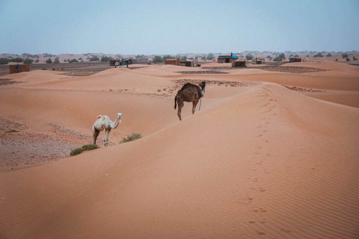 Views of the Sahara dessert in Morocco