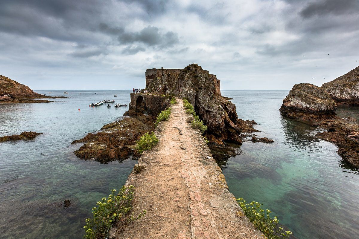 how to get to berlenga island portugal from lisbon