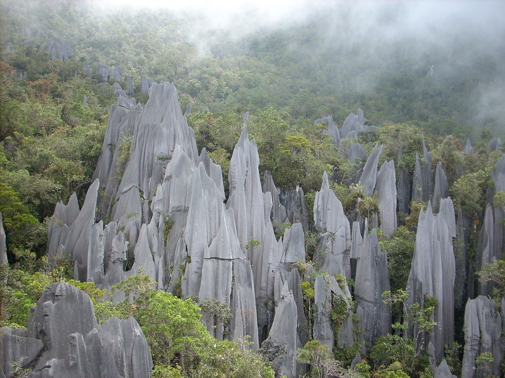 The limestone towers of Gunung Mulu National Park