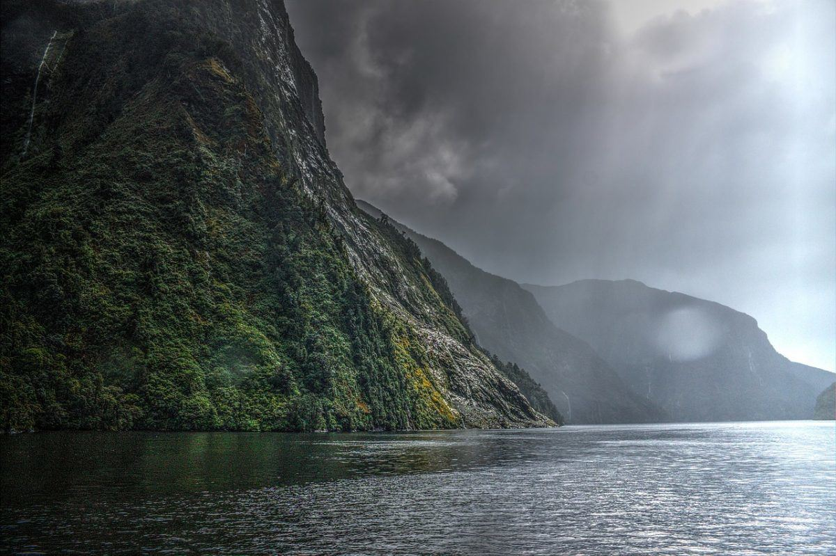 Visiting milford sound while backpacking New Zealand