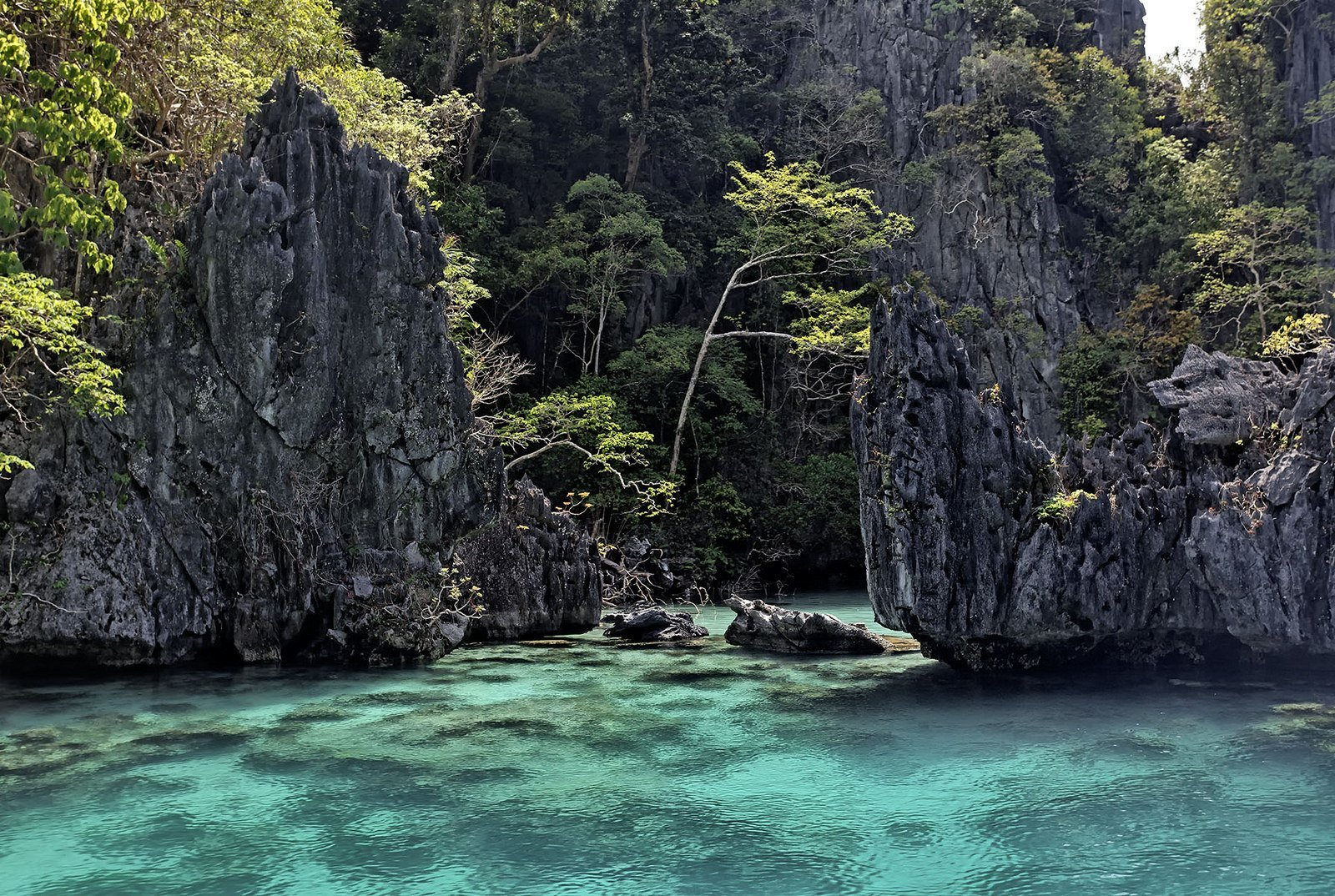 backpacking Palawan and the Philippines
