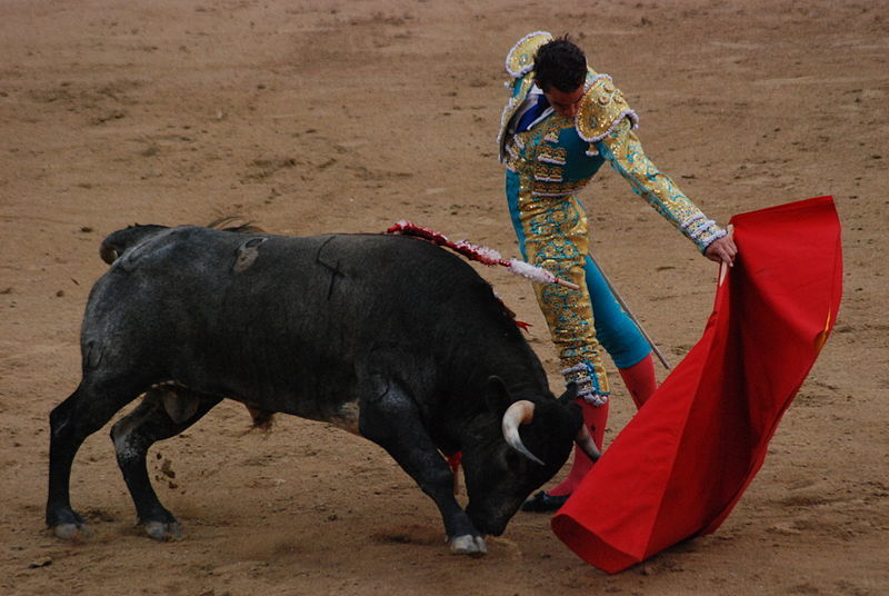 Bullfighting: Not the smartest idea for busking