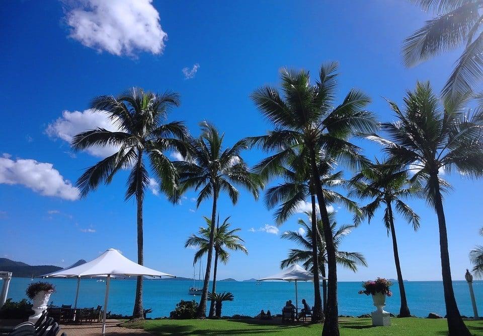 Best Hostels in Airlie Beach
