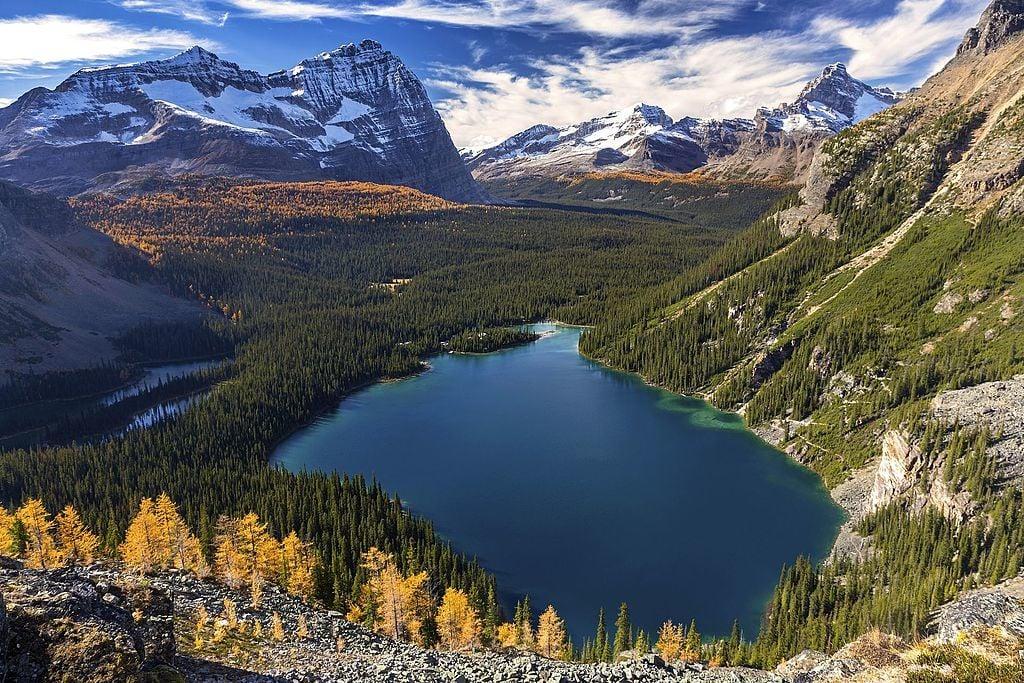 Lake_O'Hara_Yoho_National_Park-Zeljko Kozomara-wikicommons