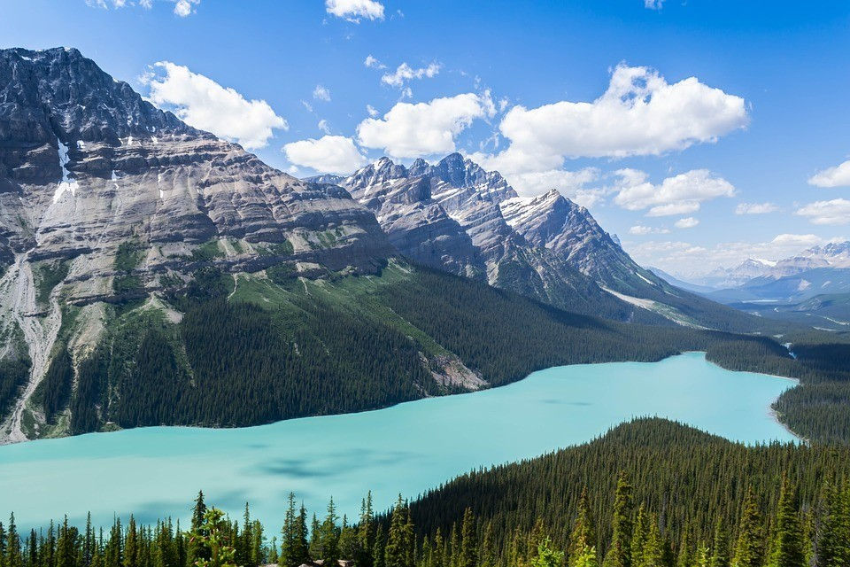 peyto-lake-canadian-rockies