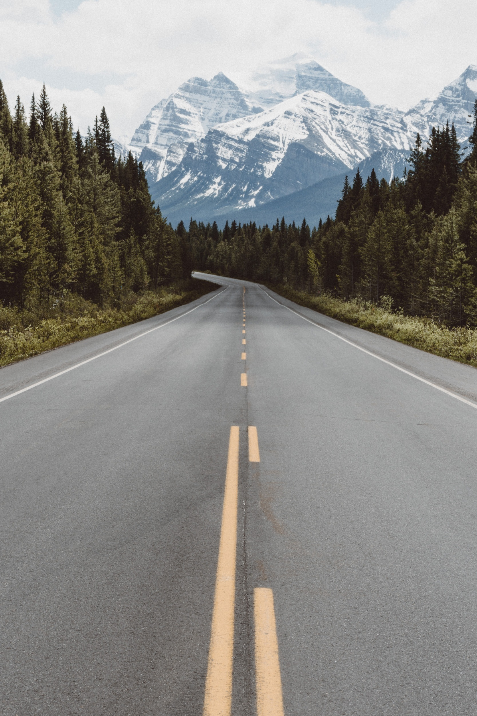 road through the canadian rockies