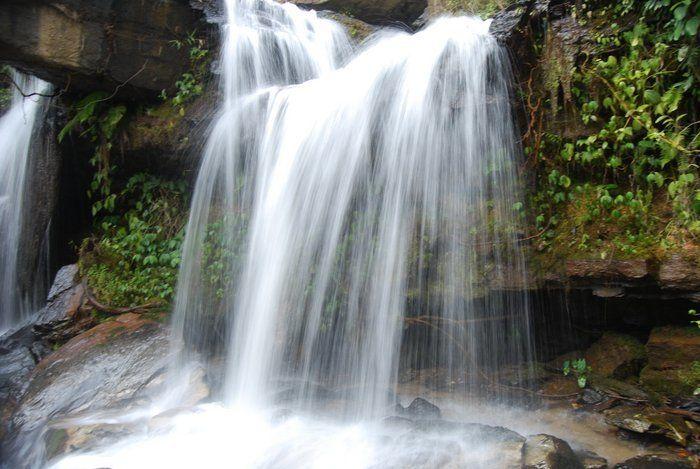 Do Go Chasing Waterfalls