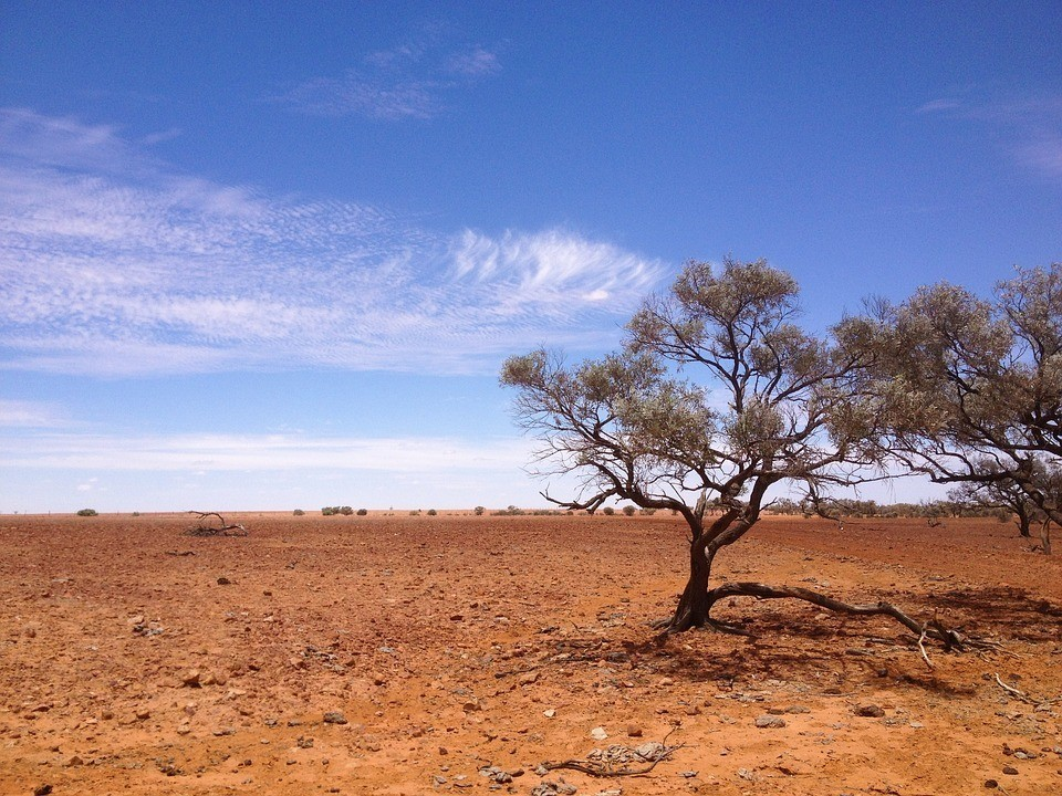 Australian outback as seen from a central area road trip