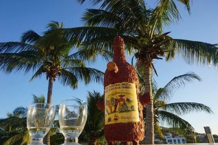 Drinking mezcal