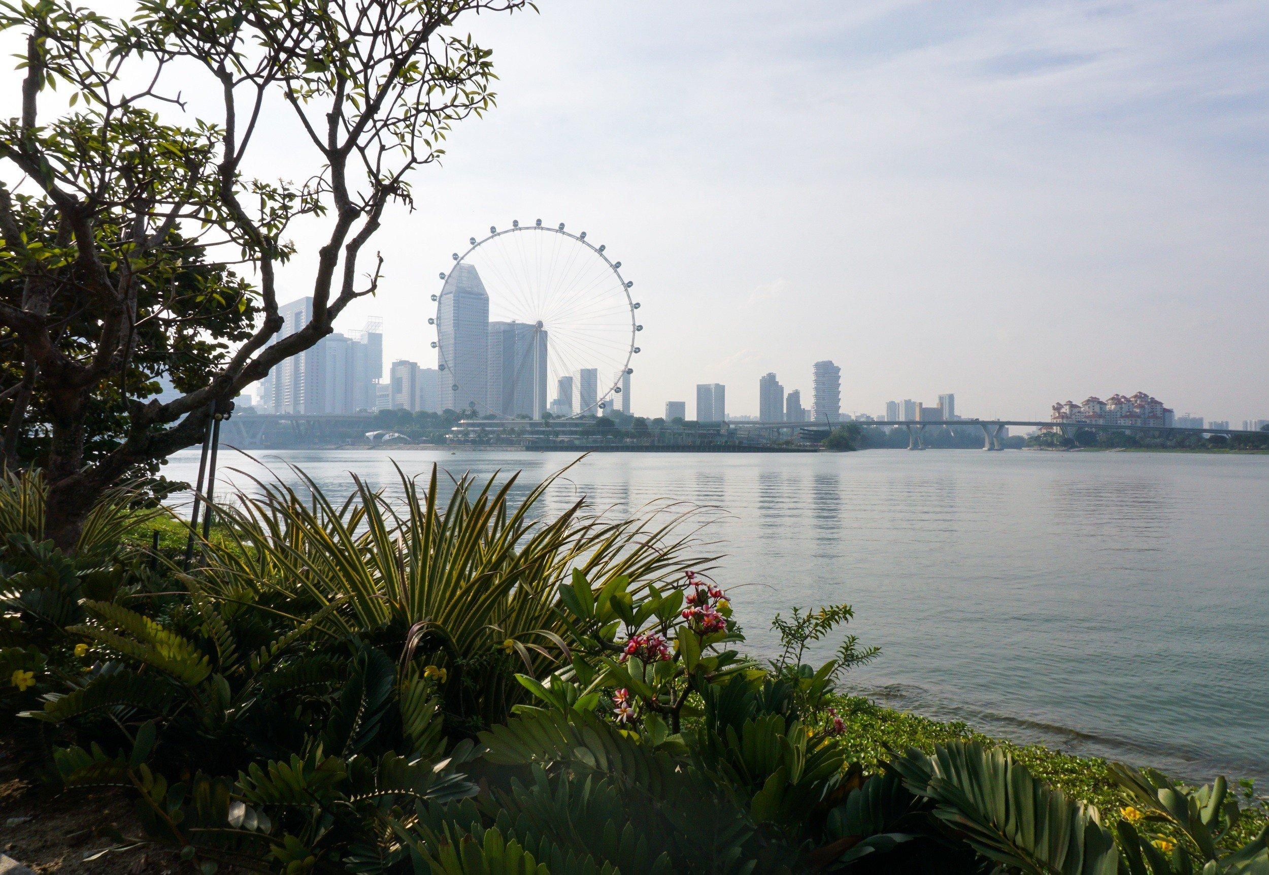 singapore-skyline-and-jungle
