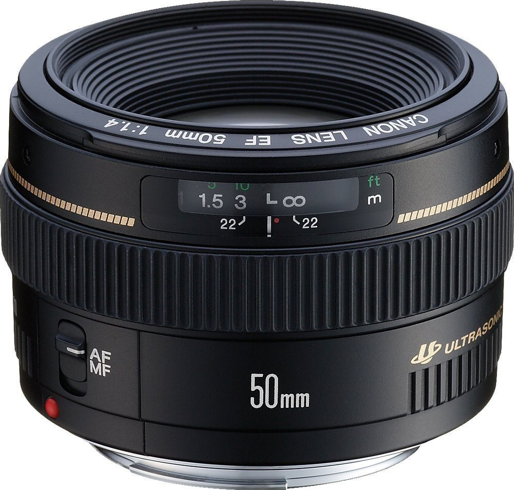 canon 50mm f/1.4 travel lens