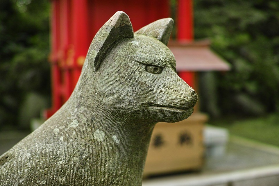 Fox Shrine - Place to go in Kyoto