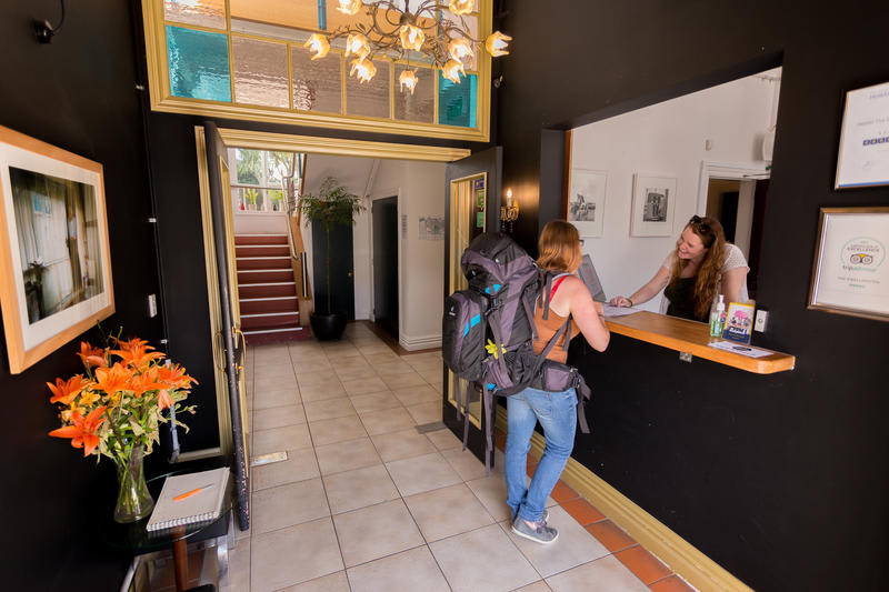 The Dwellington best hostels in New Zealand