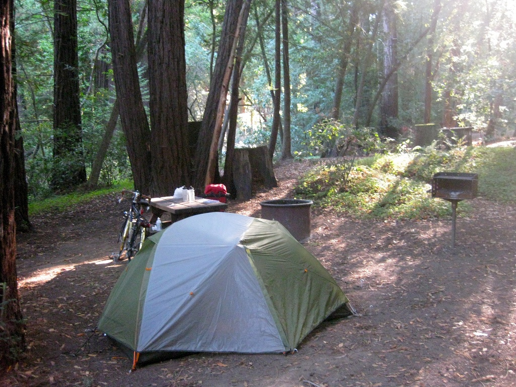 Pfeiffer State Park: big sur state park campground