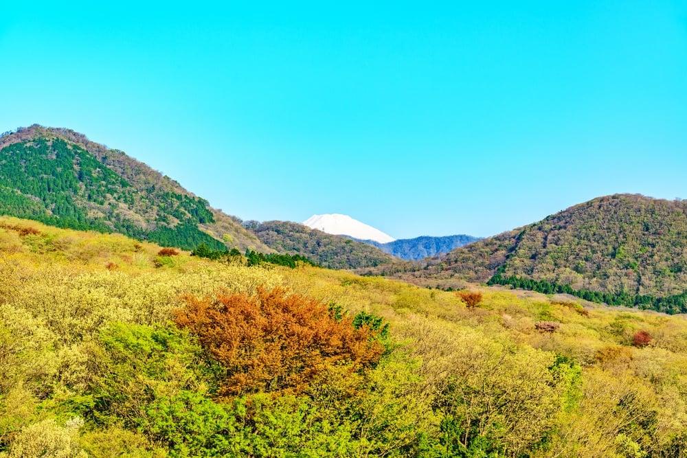 Gora, Hakone