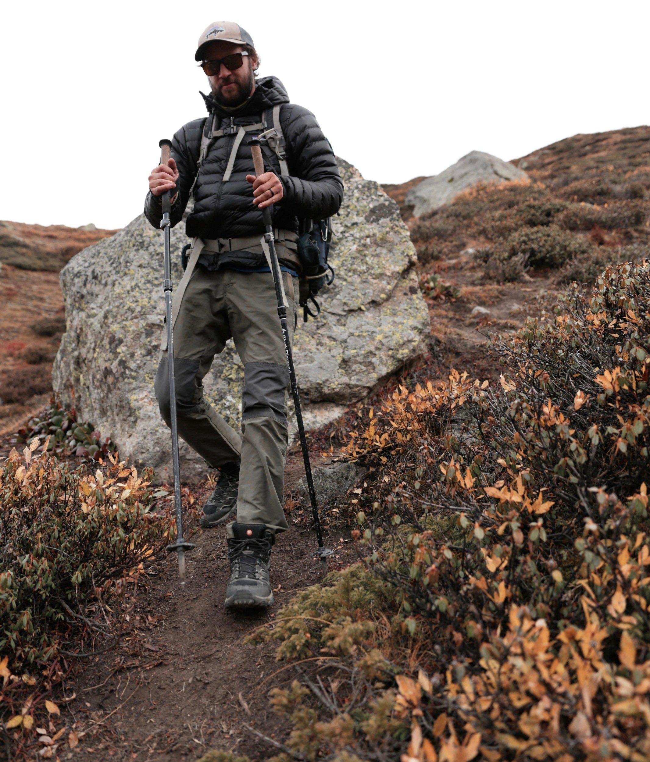 black diamond alpine flz trekking poles