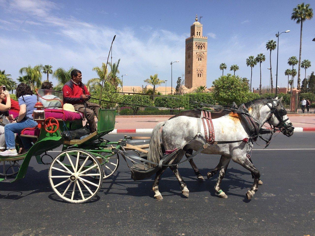 Medina ttd Marrakech