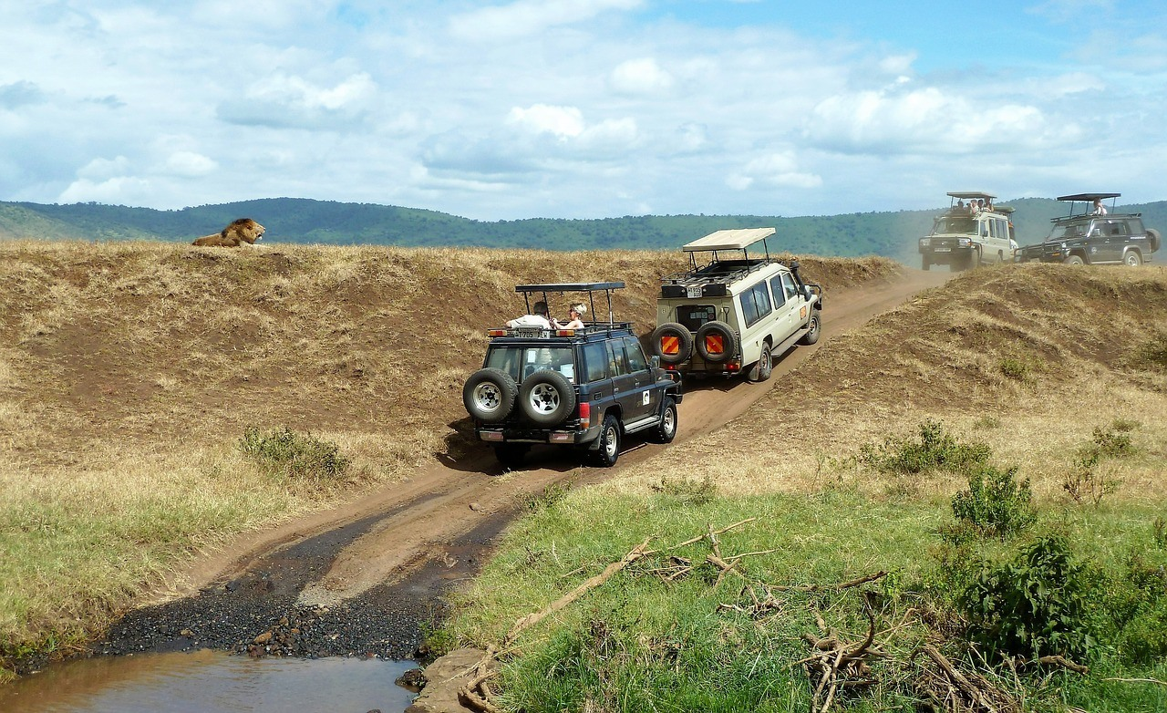 safari jeeps in tanzania