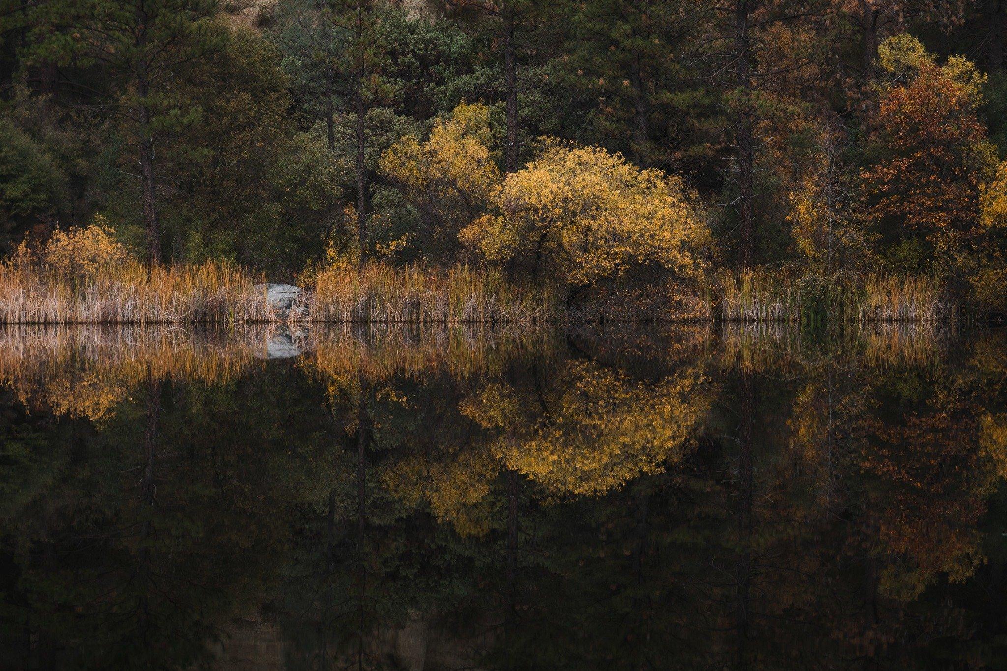 fall in California