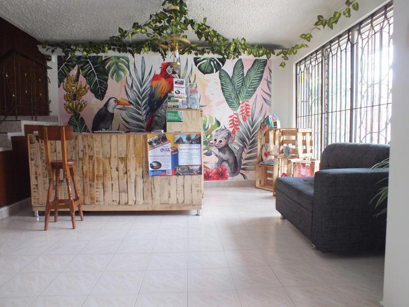 Hostal Casa Paraiso Medellin best hostels in Colombia