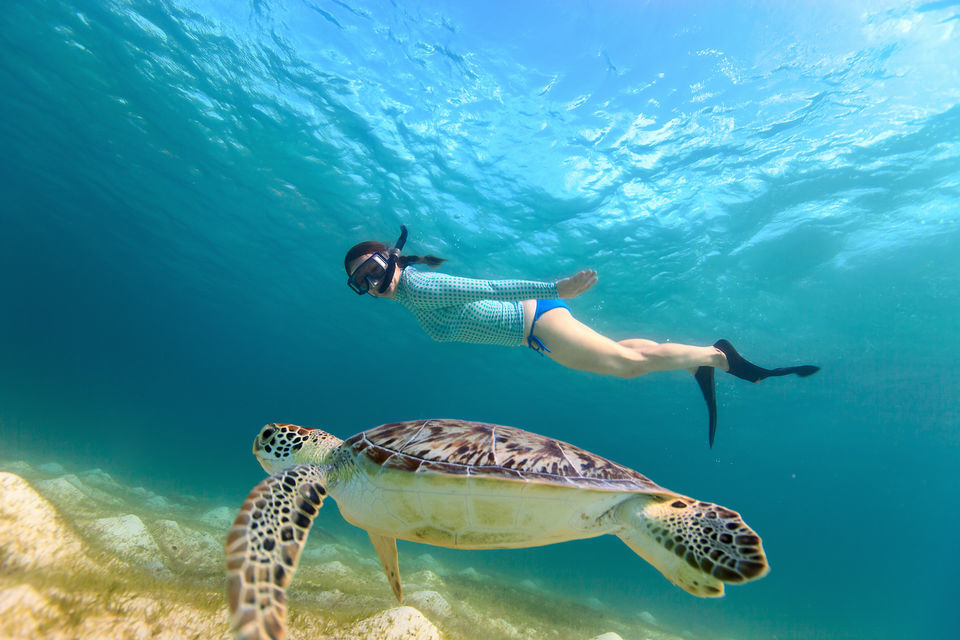 Woman scuba diving with a sea turtle in the tropical waters of the Gili Islands