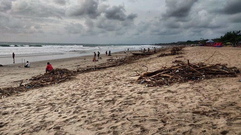 Participate in a Beach Cleanup