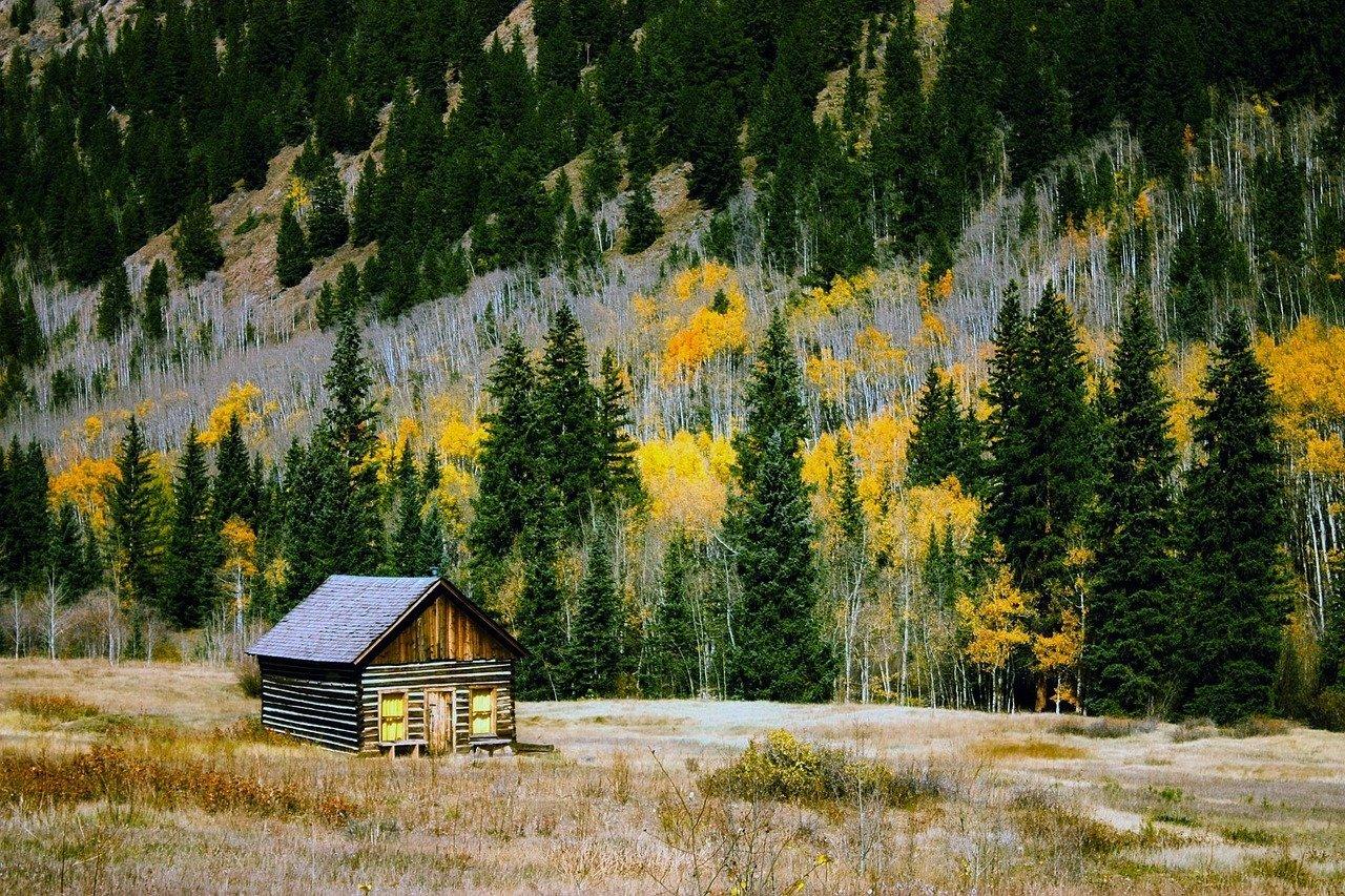 colorado log cabin in mountains autumn fall