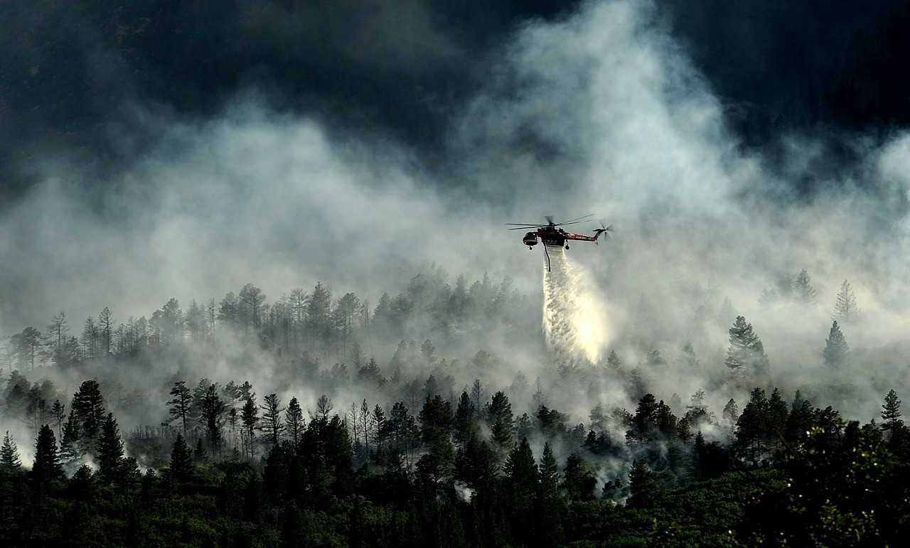 HELICOPTER fighting forest fire in colorado