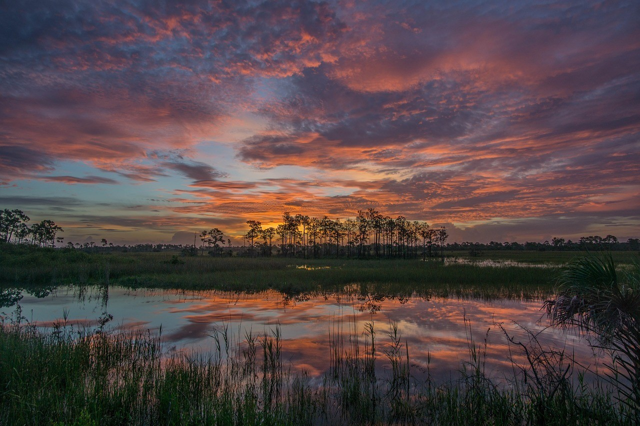 big cypress reserve sunset florida