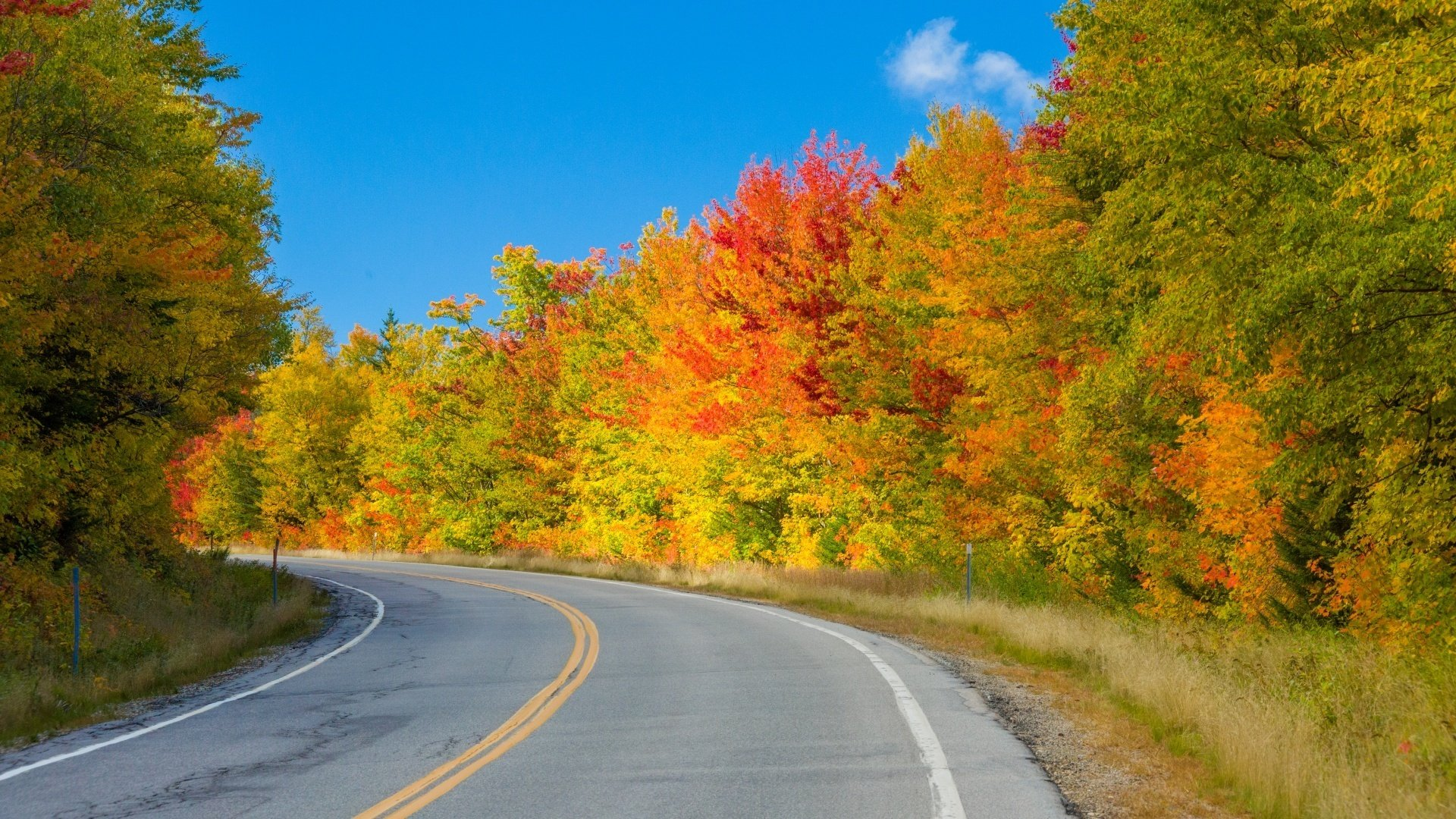 fall foliage drive in new england