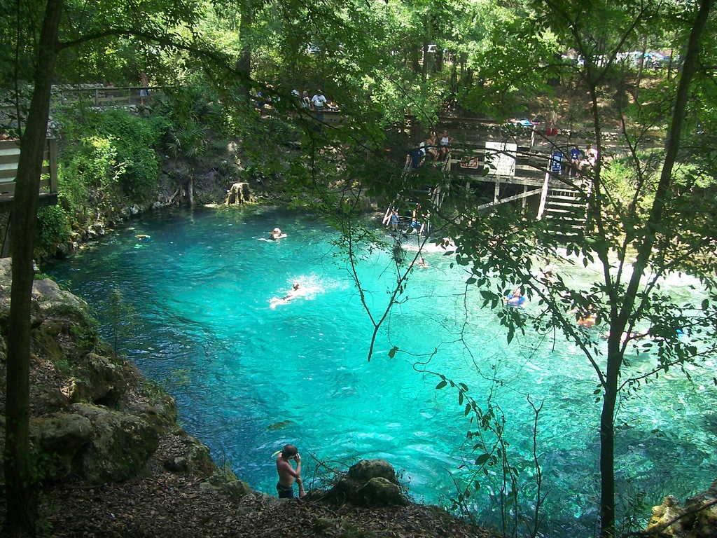 freshwater spring in central florida
