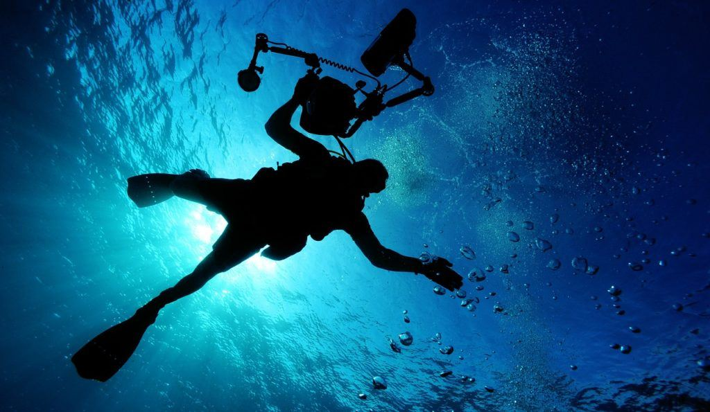 scuba diver with an underwater camera in New Zealand