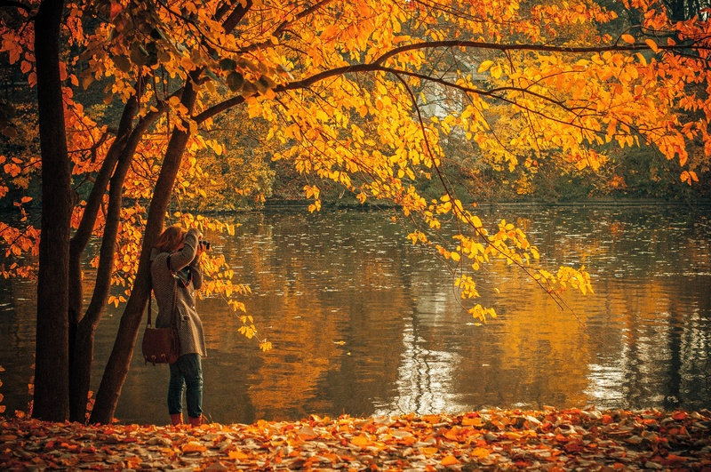 Woman taking photo with New England foliage