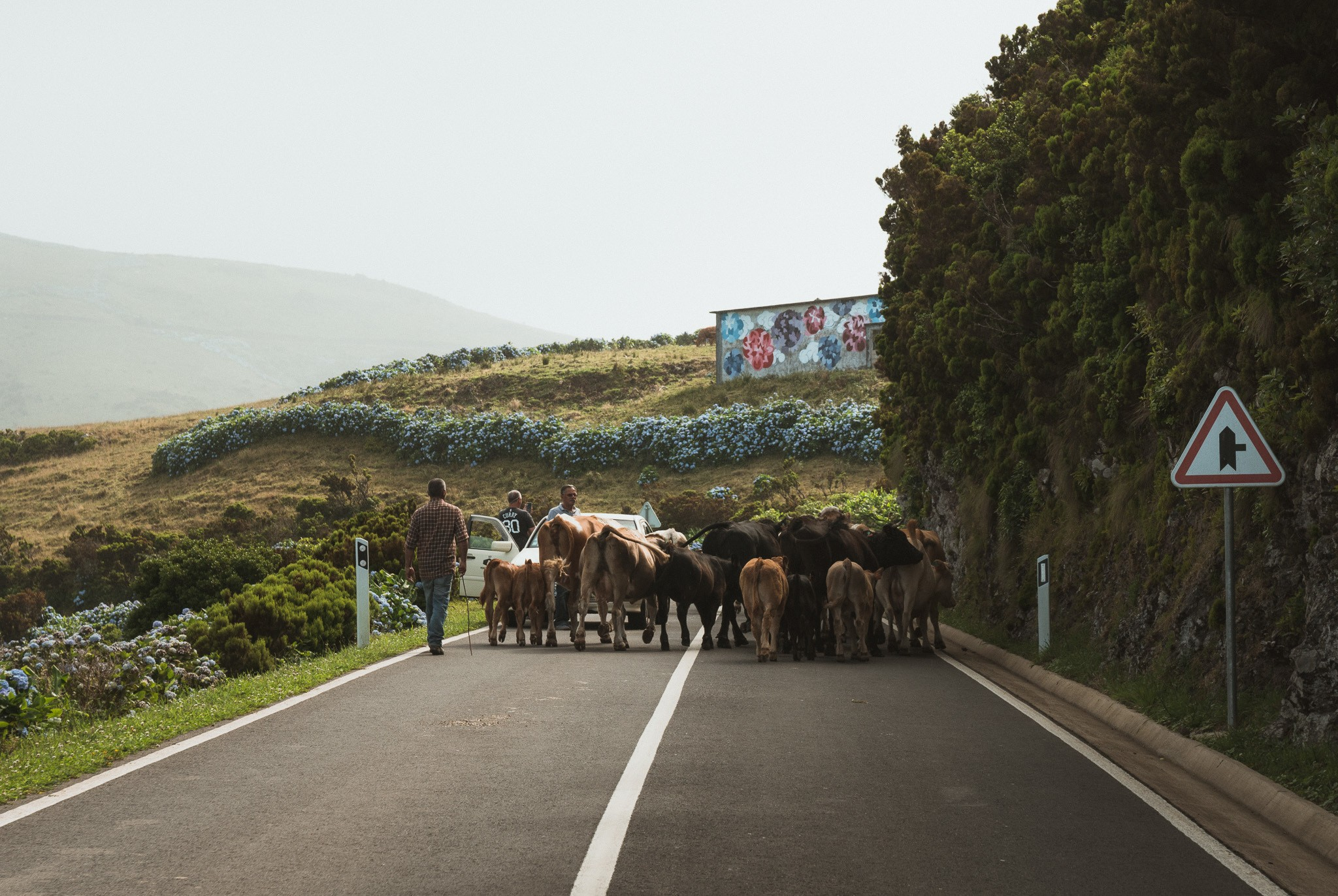 traveling around the Azores
